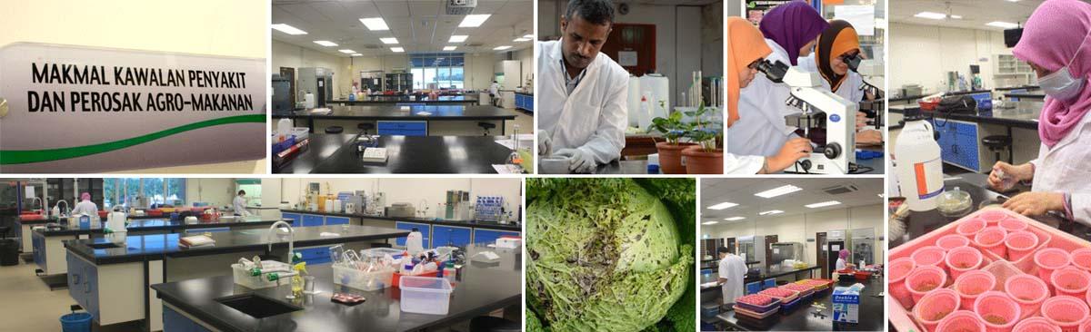 makmal kawalan penyakit agro tanaman